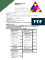 puzle triangular perimetros.pdf