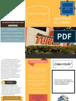 Actividad de Aprendizaje Brochure Plagio