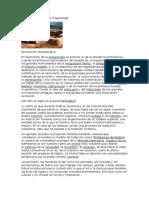 Historia y teoría de la Arqueología.docx