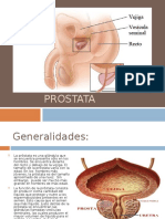 próstata dt 50 50mm
