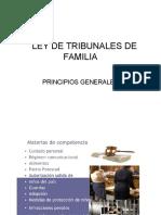 Reglas Generales Procedimiento de Familia
