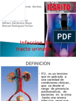 Infeccion de tracto urinarioexpo-2[1].ppt