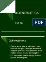 Biologia PPT - Bioenergetica