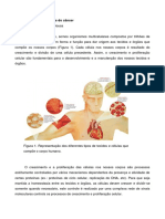 Aula 2 - Bases moleculares do câncer.pdf