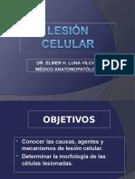 Clase 1 - Lesión Celular