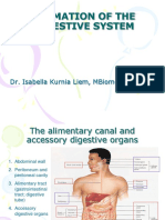 Embriologi Sistem Gastrointest