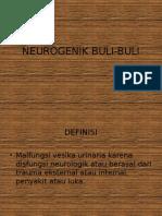 Neurogenik Buli Buli