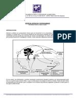 13181019_nitritos_nitratos.pdf