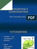 Biologia PPT - Botânica - Fotossíntese e Quimiossíntese