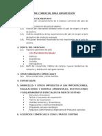 Informe Comercial Para Exportación Completo