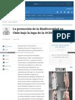 Www Elmostrador Cl Noticias Opinion 2016-08-03 La Proteccion