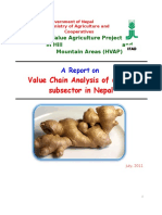 Ginger VCA Report Final_1321858136.doc