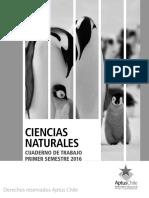 CT 1 basico I SemestreCIENCIAS SSS.pdf