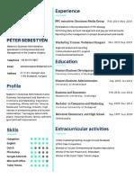 CV Peter Sebestyen