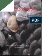 Chavez - Coevolucion UCIRI.pdf
