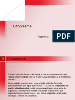 Biologia PPT - Botânica - Citoplasma