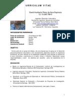 CV_David Perez_Tecnico Instrumentista.pdf