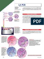 p32.pdf