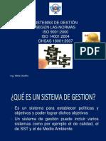 SISTEMAS DE GESTION 1.pdf