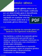 Biologia PPT - Expressão Gênica