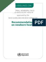 Guia Recomendaciones RN 2013