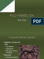 Biologia PPT - Filo Annelida