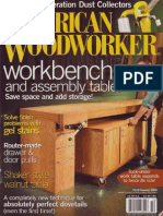 American Woodworker 119