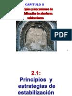 Capítulo 2 Principios, Mecanismos de Estabilizacion