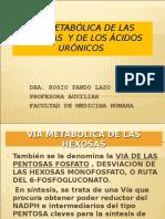 Vía metabólica de las hexosas y acidos glucoronocos.ppt