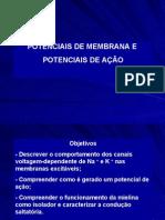 Biologia PPT - Membrana - Potencial de Ação