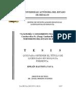 Taxonomia y Conocimiento Tradicional HONGOS
