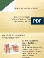 El Sistema Reproductivo