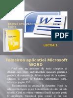 lectia1 word2007