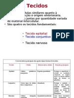 Biologia PPT - Botânica - Tecido Epitelial - Parte 01