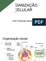 Biologia PPT - Org Celular e Transporte Oficial
