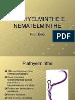 Biologia PPT - Plathyhelminthe e Nematelminthe