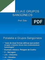 Biologia PPT - Polialelia e Grupos Sanguineos