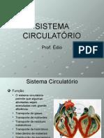 Biologia PPT - Sistema Circulatorio