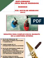 AUDITORIA RIESGOS.pdf