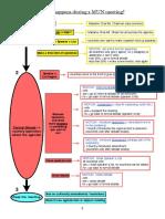 Flow Chart and Script MUN
