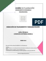 Guia Tecnica Consulta Externa Basica