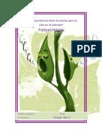 1 FOTOSINTESIS SECUENCIA .pdf