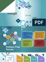 Indigo Airlines Marketing
