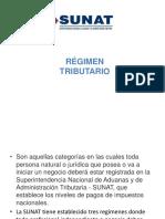 REGIMEN TRIBUTARIO RUS RER RG.pdf