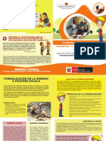 FOLLETO PARA FORMALIZAR.pdf