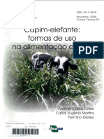 CT57Capimelefanteformasdeuso.pdf