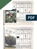 luzstellavelasquezbarrero.1985_Parte5.pdf