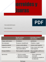 Hemorroides y Fisuras