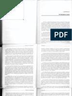 Morgan G Imagenes de La Organizacion PDF (Dragged)