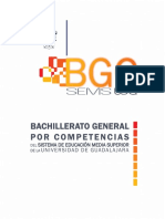BGC-UDG Documento Base Evaluado COPEEMS (1)